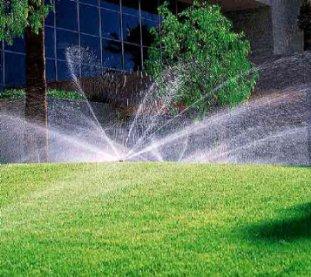 Dvoriste, travnjaci i ostala zelena površina - Page 20 23453-1309976668