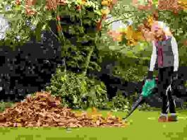 Duvalica-usisivač za lišće ALS 25 Bosch
